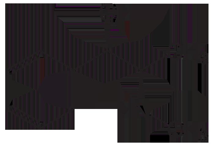 Химическая формула эфедрина