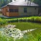 Загородные условия жизни реабилитационного центра «Свобода»