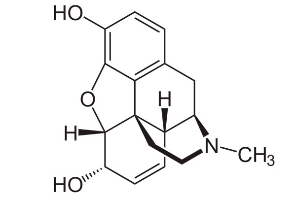 Химическая формула Морфина