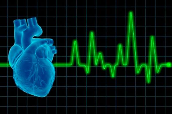 Повышенное сердцебиение человека, употребляющего диметилтриптамин (ДМТ)