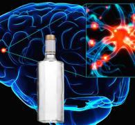 Алкогольная эпилепсия: признаки, причины, методы лечения