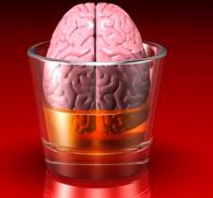 Влияние алкоголя на центральную нервную систему человека