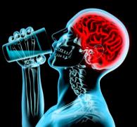 Восстановление головного мозга после алкоголизма