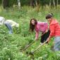 Огород, домашнее хозяйство на территории центра