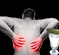 Причины боли в почках после употребления алкоголя