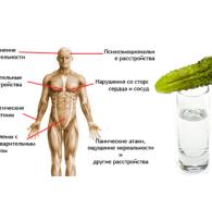 ВСД и алкоголь: совместима ли болезнь со спиртным?