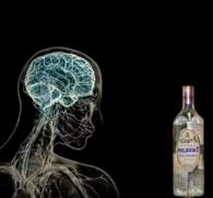 Алкогольная деменция: симптомы и лечение