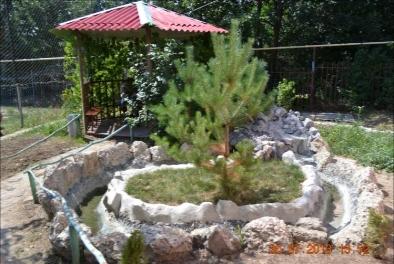 Сад, территория двора, беседка в центре Эверест