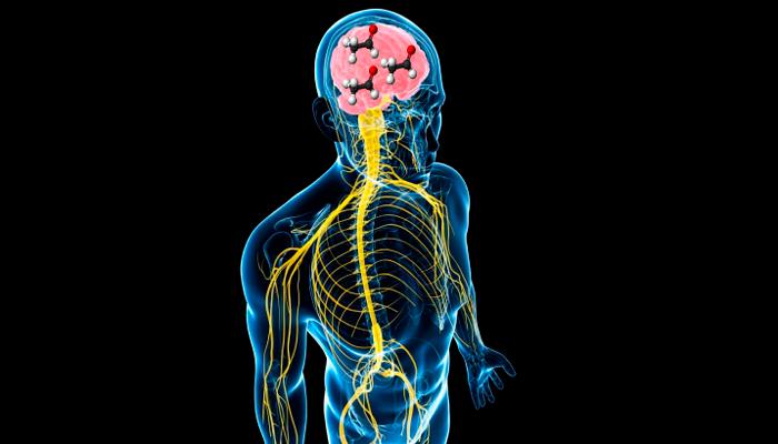 Нарушение мозговой деятельности человека из-за вредного воздействия алкогольных токсин