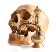Вред от курения кальяна для здоровья человека: только проверенные факты