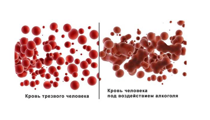 Сравнение крови нормального человека с кровью опьяненного