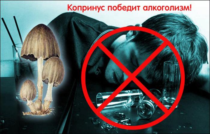 Копринус победит алкоголизм