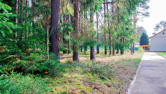 Территория реабилитационного наркологического центра «Метод» (Киров)