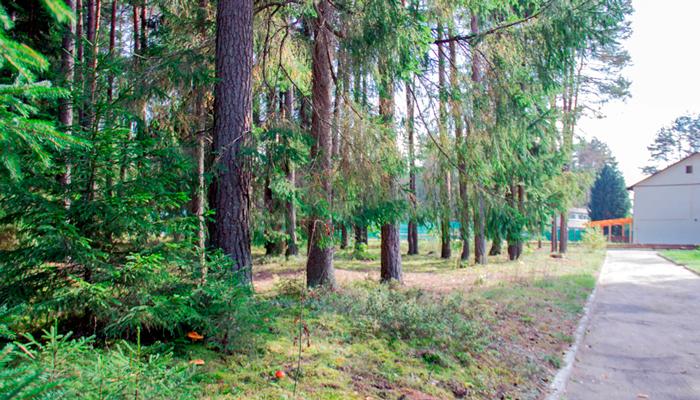 Территория реабилитационного наркологического центра «Метод» (Йошкар-Ола)