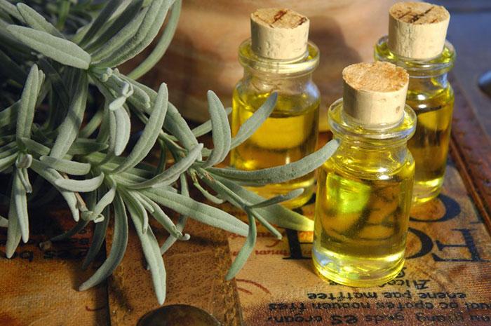 Гомеопатия лечит алкоголизм природными компонентами