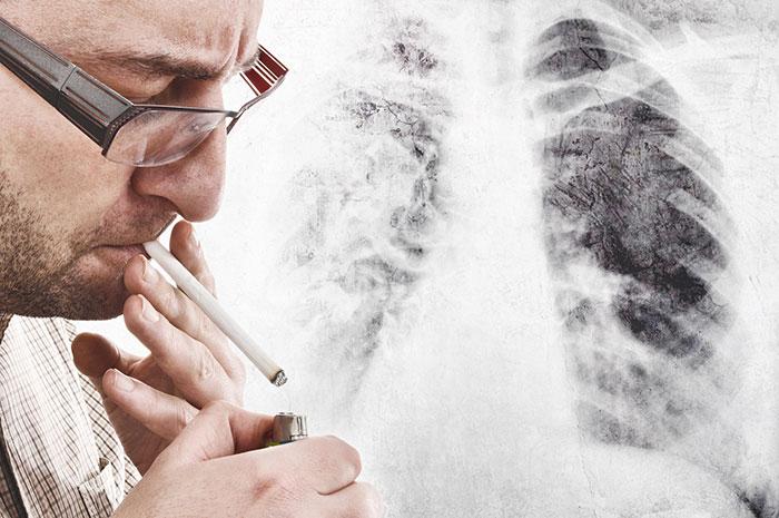 Курение как сигарет так и трубки вредит здоровью