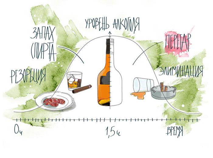 Неприятный запах - процесс переработки алкоголя