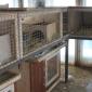 Содержание домашних животных в реабилитационном центре «Вершина» (Хабаровск)