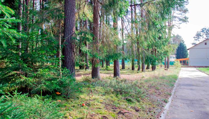 Территория реабилитационного центра «Метод» (Ульяновск)