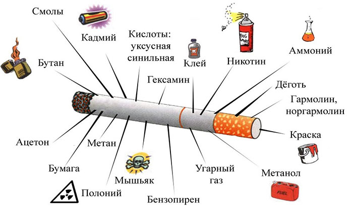 Вредные вещества в составе сигарет