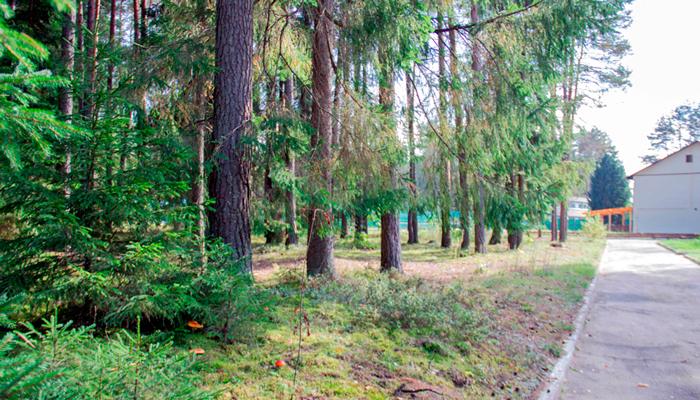 Территория реабилитационного центра «Метод» (Тула)