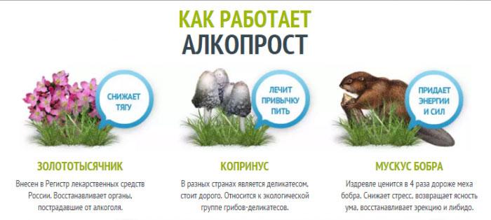 Принцип работы препарата Алкопрост