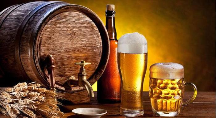 Польза пива для организма известна ещё с давних времён