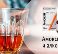 Амоксиклав и алкоголь: совместимость и последствия для организма человека
