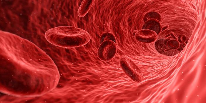 Алкоголь приводит к снижению уровня эритроцитов в крови, что влечёт за собой гипоксию