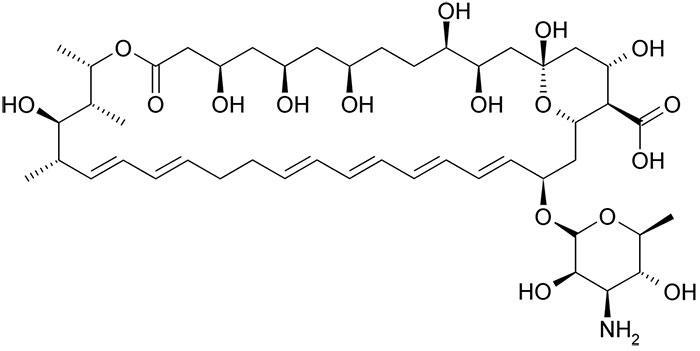 Нистатин - структурная формула действующего вещества