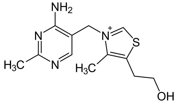 Тиамина гидрохлорид - структурная формула действующего вещества препарата Нейромультивит