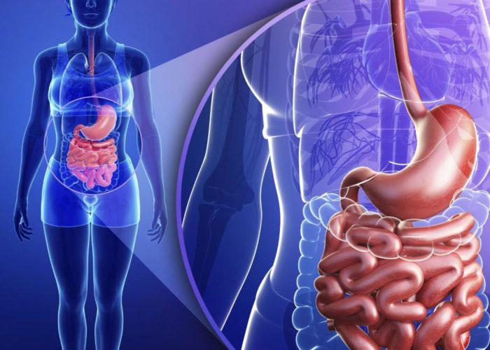 Мезип применяется при ряде заболеваний связанных с нарушениями пищеварительной системы