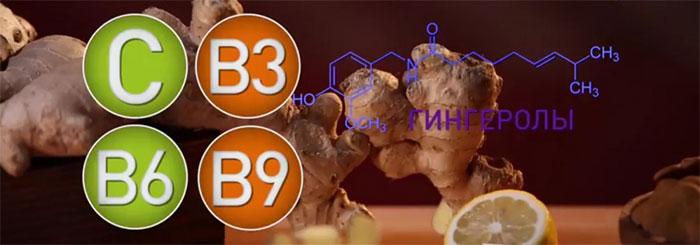 Корень имбиря обладает богатым биохимическим составом витаминов и микроэлементов
