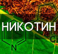 Через сколько никотин полностью выходит из организма : ответы экспертов