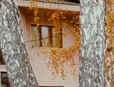 Реабилитационный центр «Шаг» (Нижний Новгород)