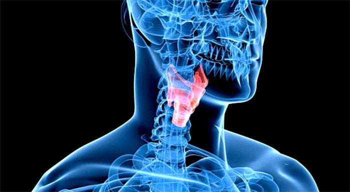 При курении на голосовых связках откладываются компоненты табачного дыма