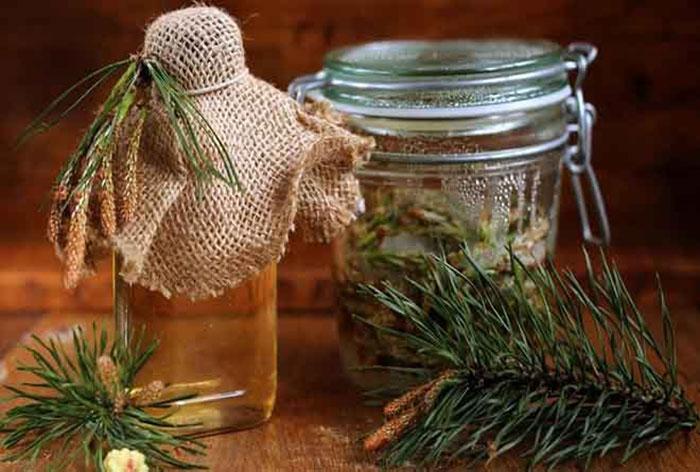 Раствор из сосновых почек является одним из действенных народных способов избавления от одышки