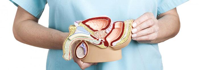 Простатит - это острое воспалительное заболевание предстательной железы