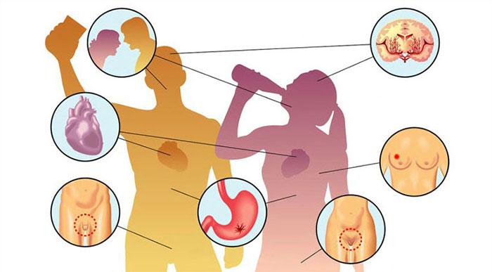 Регулярное употребление алкоголя негативно влияет на все органы и системы