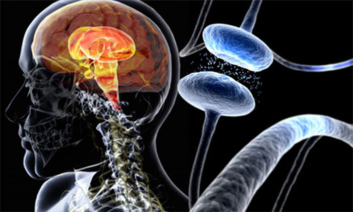 Болезнь Паркинсона является дегенеративным заболеваниям экстрапирамидной моторной системы