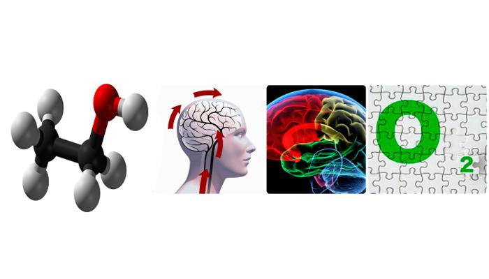 Кислородное голодание мозга из-за действия этанола