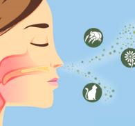 Сенсибилизирующее действие: основные виды и причины появления аномальной реакции организма