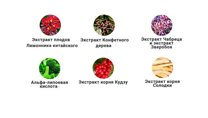 Вещества, входящие в состав лекарства AlcoTaboo