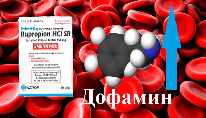 Повышение концентрации дофамина в крови под действием Бупропиона
