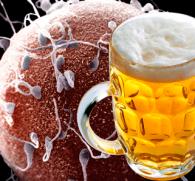 kak-pivo-vliyaet-na-zachatie-rebenka