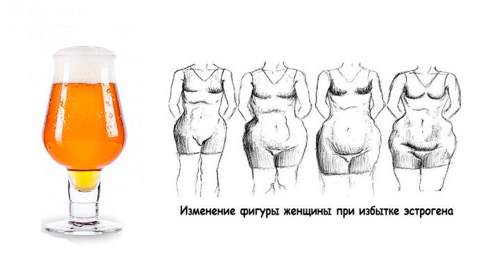 Повышение уровня эстрогенов у женщин из-за систематического употребления пива
