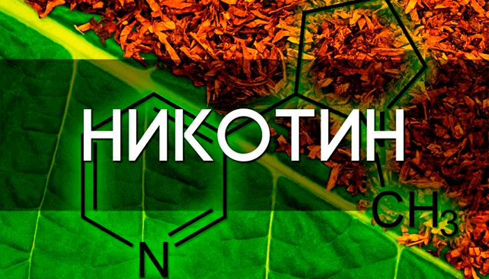 Содержание никотина в листьях табака