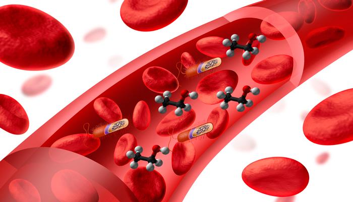 Попадание в кровеносную систему молекул этанола вместе с кишечными палочками при применении алкогольной клизмы