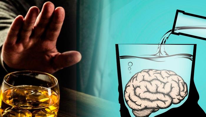 Разрушение головного мозга алкоголем