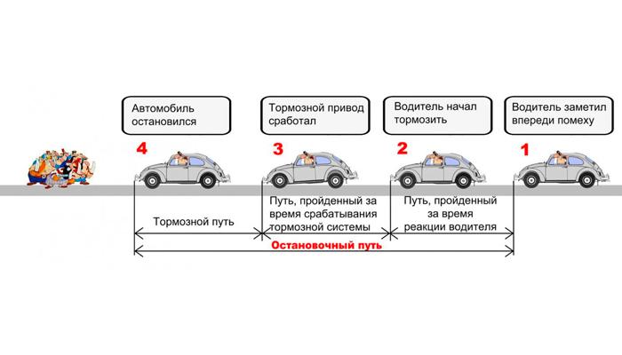 Понятие реакции водителя автомобиля